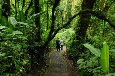 selvatura_trails